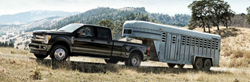 side view of a black 2019 Ford Super Duty towing a horse trailer.