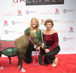 Cindy Ashton with Jodie Elmore Diegel and Mystery the Mini horse on the Red Carpet at Soul Harbour Ranch Event in Barrington IL.
