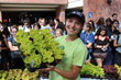 The Collegiate Plant Initiative is full of Golden Hearts