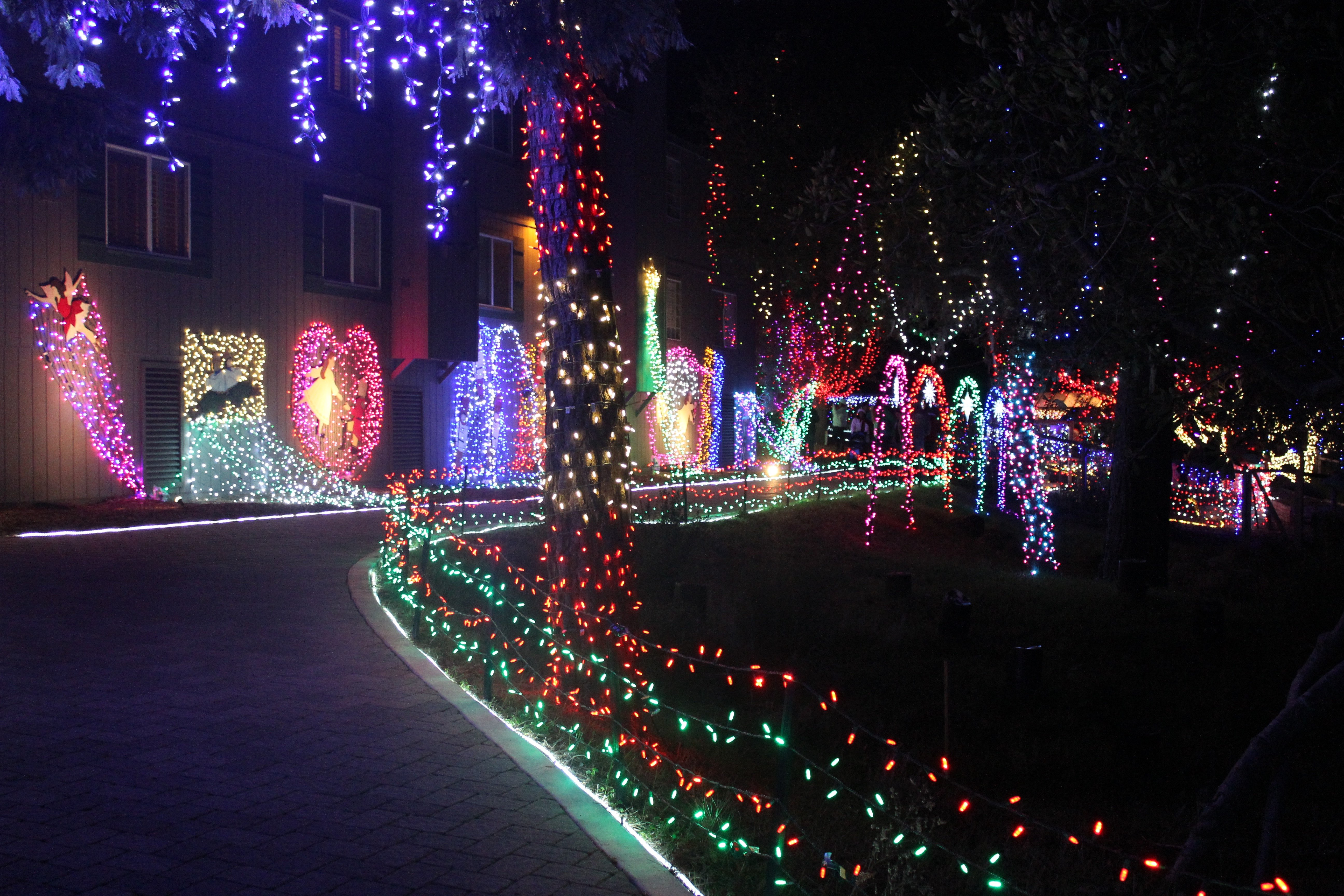 Christmastime in Cambria, California