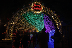The Cambria Christmas Market features millions of lights on display.