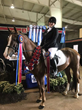Lakeville Native Finishes World Championship Horse Show Highly Decorated