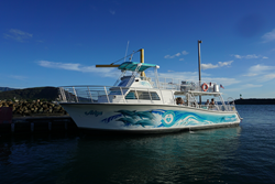 The new Dolphins and You boat in Waianae Boat Harbor