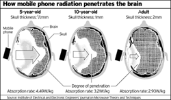 The younger the child the deeper the radiation can affect the brain