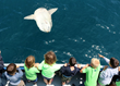 Support children's ocean education programs with Ocean Institute when you Travel Kindly.