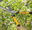 Centurion knows tools. Whether gifting these tools to a new gardener or giving them to a master gardener, Centurion tools are up for any task.