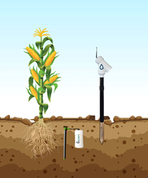 Precision Agriculture and AgTech
