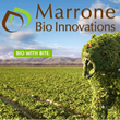 Marrone bio-innovations
