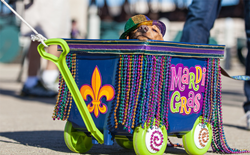 A photo of a dog in a Mardi Gras costume