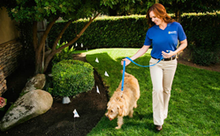 Our exclusive Perfect Start™ Plus Training ensures a safe, stress-free adjustment to your pet's new boundaries.