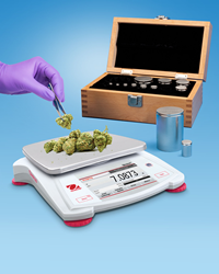 A new highly accurate scale and a calibration kit to help keep it that way to meet strict regulatory requirements are ideal for cannabis industry.