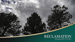 Sub-Seasonal Climate Forecast Rodeo