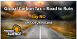 Global Carbon Tax = Road to Ruin