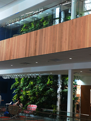 Two lush, green LiveWall systems at Cornerstone University.