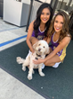 Laker Girls with Regency Palms Long Beach dog Teddy