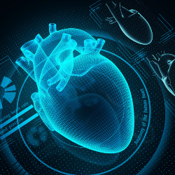 InfoBionic | Leading Digital Health Company that Created the MoMe® Kardia Remote Cardiac Monitoring Platform