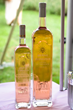 Rosé all day, rosé cruise, La Nuit Rosé, Pinknic, pink wine, Rosé Splash, Summer Rosé & Bubbly Fest, summer wine and food festivals, North Fork Wine events, New York Wine Events, summer wine tasting, wine and food festivals