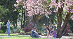 Corban students enjoy a sunny afternoon between classes.