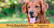 Pennsylvania Celebrity Dog Lands National Calendar Day - Never Bean Better Day August 22