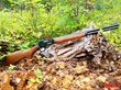 Grizzly Custom Guns Marlin 336 .450 Bushmaster conversion
