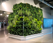 LiveWall Living Wall Brings Natural Beauty and Calm to the TSA Checkpoint at Appleton International Airport (ATW)
