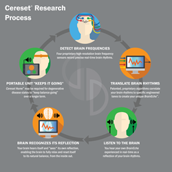 Cereset Research Process