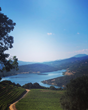 Pulido-Walker's Melanson Vineyard offers breathtaking views of Lake Hennessy.