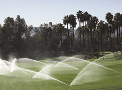 Ness Turf Announces Toro Irrigation Acquisition