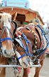 Solvang Julefest Parade, Part of California Central Coast Christmas Season Celebration