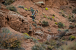 Monster Energy's Brendan Fairclough Takes Fourth Place at Mountain Biking's Premiere Event Rampage