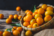The Nagami variety of kumquats grown in Dade city feature a thin, sweet skin and a slightly tart center.  They are about the size of a cherry tomato and should be eaten fresh like a grape, peel and al