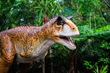 The nation's leading animatronic dinosaur Company, Billings Productions, to open a new facility in Allen, Texas.