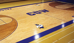 Concordia University Wisconsin in Mequon is the newest location for Nike Volleyball Camps.