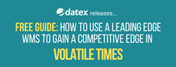 Datex free guide on WMS