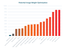 Potential Image Weight Optimization