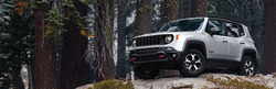 2020 Jeep Renegade in gray on top of a hill