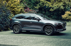 A gray 2020 Mazda CX-9 parked in a wooded area.