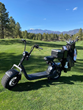 Troon Embraces Single-Rider Revolution, Partners With Phat Scooters