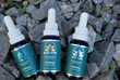 The Relief Leaf Tinctures, Focus, Calm, and Elevate