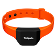 Petpuls, the AI-powered collar that gives your dog a voice so you understand how your furry best friend feels.
