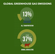 Cattle green house emissions