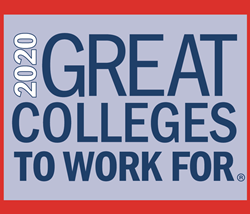 2020 Great Colleges to Work For logo