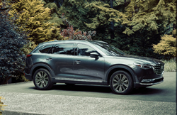 The side image of a gray 2021 Mazda CX-9 parked in a forested area.