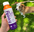 Freely Bone Broth Toppers Will Be Available for Sale at All Best Friends Pet Hotels