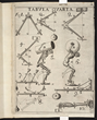 Borelli, Giovanni A., 1680, De Motu Animalium, Table 4. First published work on biomechanics. Courtesy of The Linda Hall Library of Science, Engineering & Technology.