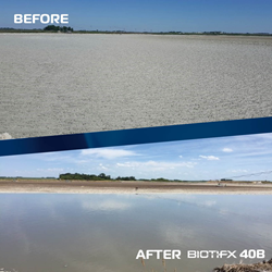 Before and after image of a lagoon being treated with Biotifx 40B.