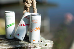 Sovány is currently available in four different flavors, including Ingenious Apple, Remarkable Raspberry, Brilliant Orange and Simply Sparkling.