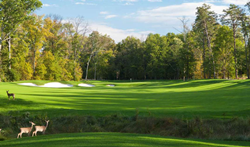 Lansdowne Resort and Spa in Lansdowne, VA will host the ACC Girls Golf College Showcase Camp July 2021.