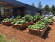 The program helps HPE employees develop the skills needed to grow a successful home garden of any size.