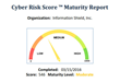Cyber Maturity Report